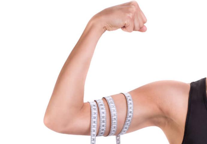 二の腕の平均サイズと理想のサイズは?