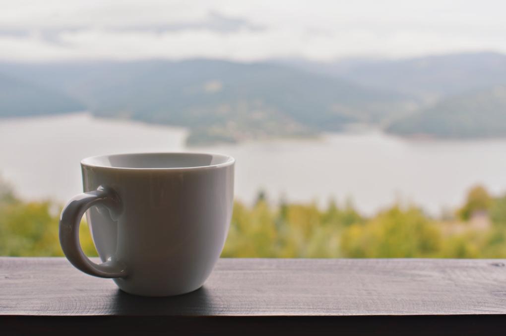 緑茶コーヒーダイエットの正しいやり方とは?作り方や飲み方まで解説!