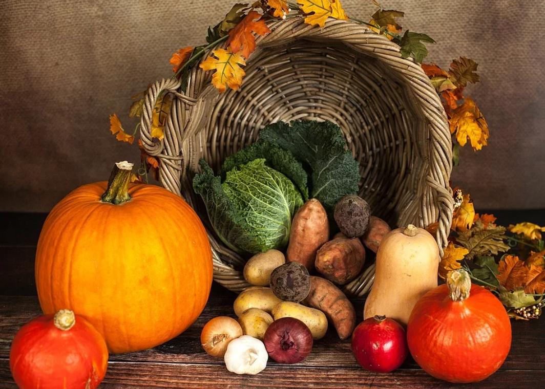 【厳選】脂肪燃焼効果の高い15種類の野菜とは?太りやすい野菜も15種類紹介!
