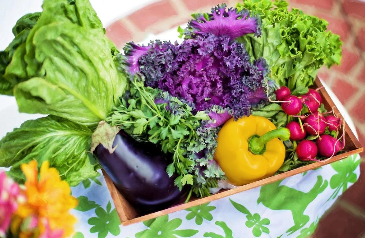 【おすすめ】ダイエッター必見!カロリーの低い食べ物8選