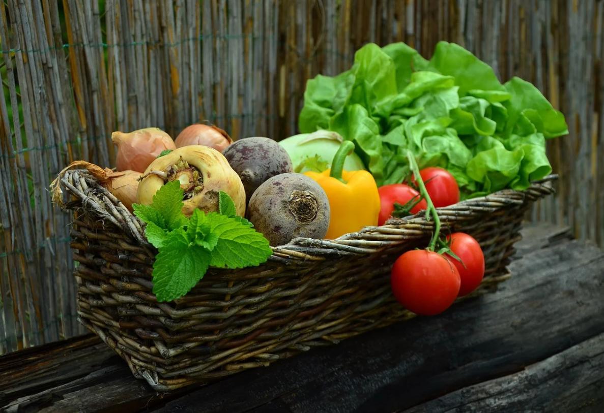 ダイエッター必見!おすすめのカロリーの低い食べ物8選